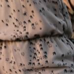 patron couture burda 2014
